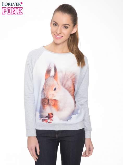 Szara dresowa bluza z nadrukiem wiewiórki