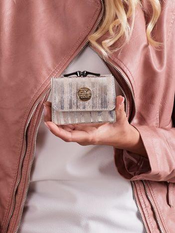 Srebrny mały portfel w paski