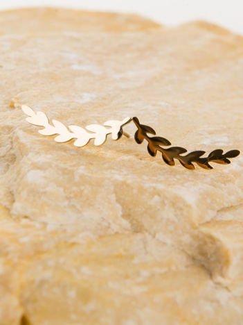TWIG Laurels Złote kolczyki damskie -gałązka laurowa wykonane z najwyższej jakości STALI CHIRURGICZNEJ 316L