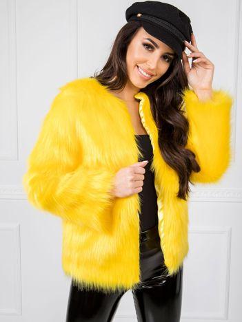 Żółta kurtka BSL
