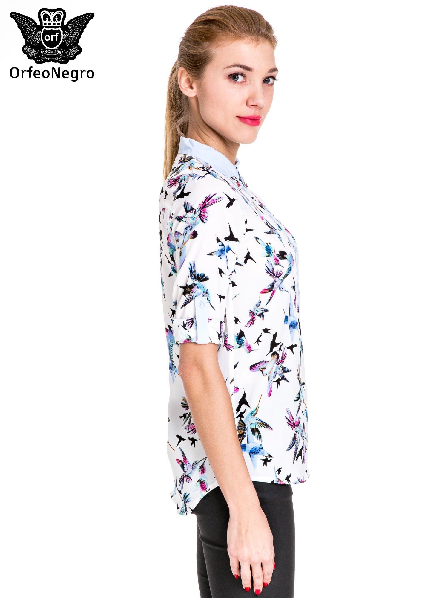 Koszula w kolibry z błękitnym kołnierzykiem, mankietami i listwą                                  zdj.                                  5