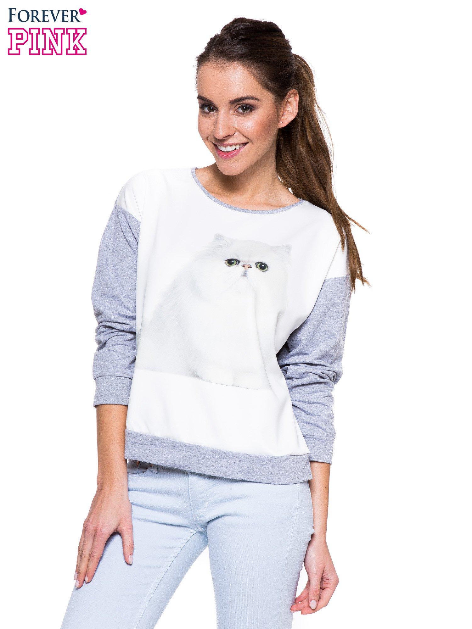 Szara melanżowa bluza dresowa z kotkiem                                  zdj.                                  1
