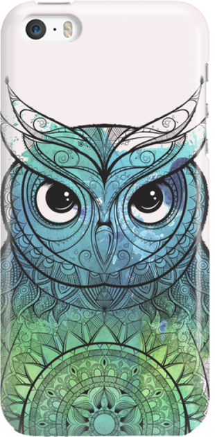 Funny Case ETUI IPHONE 5G OWL