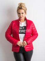 Czerwona kurtka z pikowaniem PLUS SIZE                                  zdj.                                  3