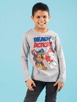 Szara bluzka dziecięca z nadrukiem PSI PATROL                                  zdj.                                  1