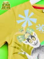 Żółty t-shirt chłopięcy KRÓL JULIAN                                  zdj.                                  3